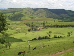 Fazenda no Sul de Minas