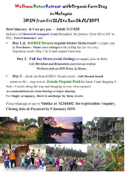 2019 Post CNY - Wellness Detox Retreat at Desaru Organic farm resort