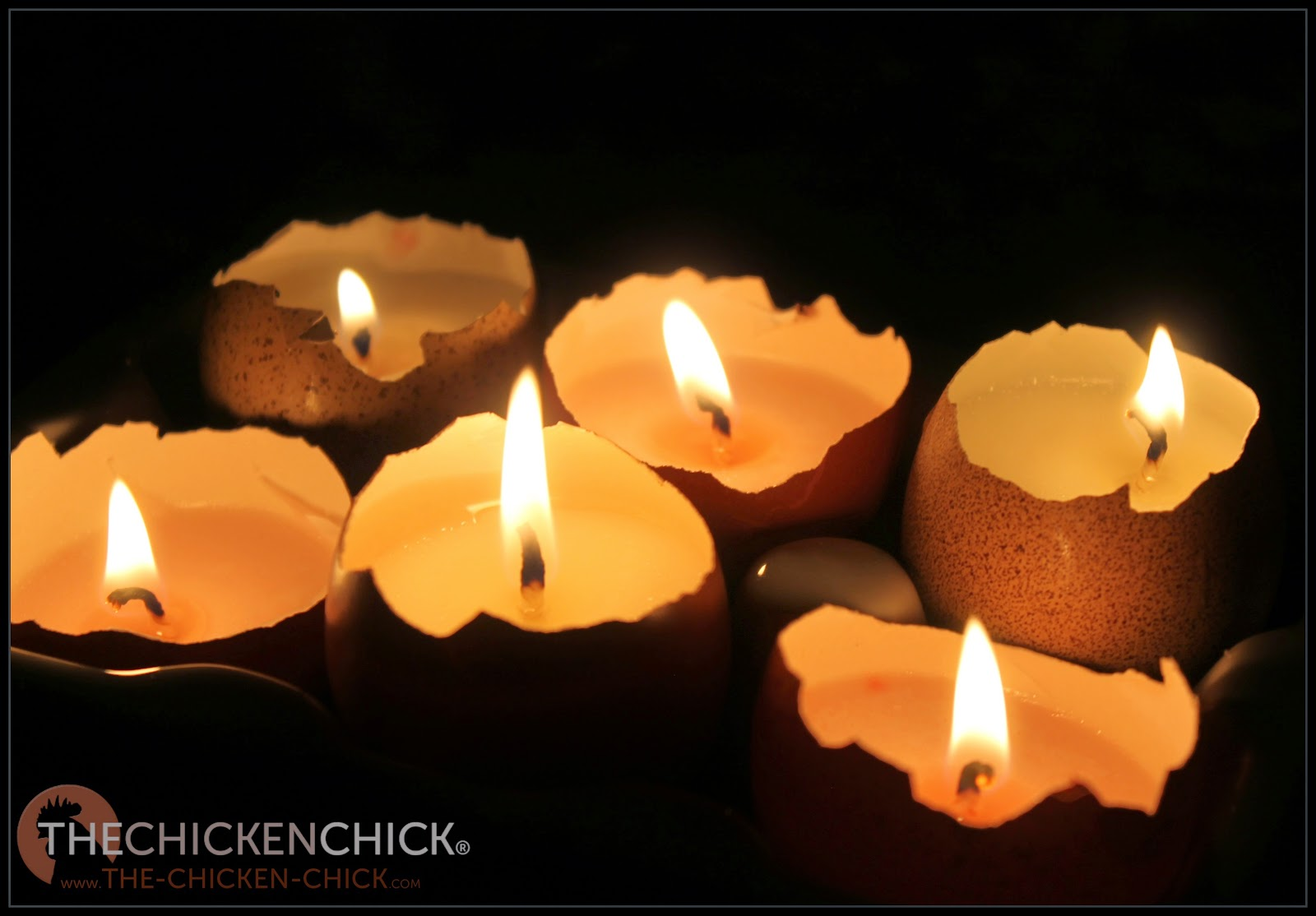 Eggshell Candles The Chicken Chick 174