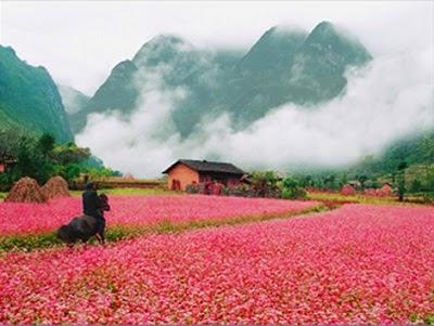 Di Phuot Ha Giang