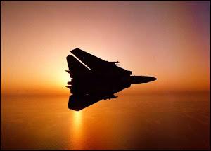 Grumman F-14D