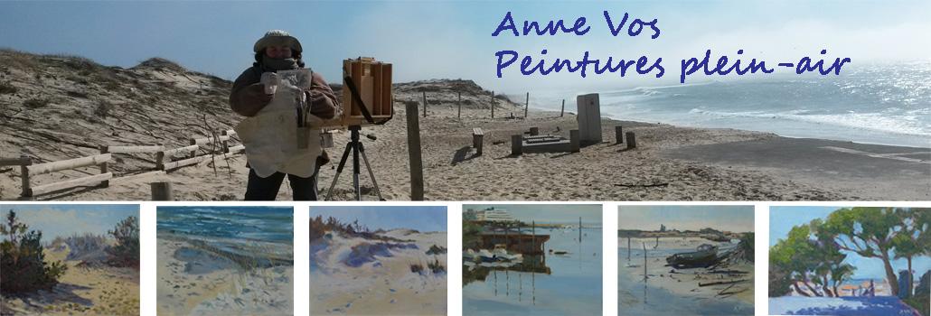 Anne Vos -  le journal d'un peintre