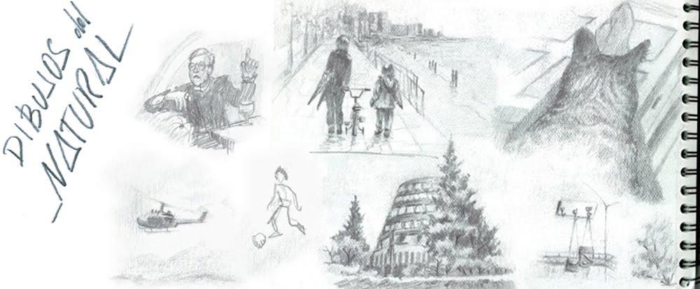 Dibujos del natural