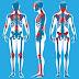 7 Makanan perlu elak jika sakit kronik fibromyalgia