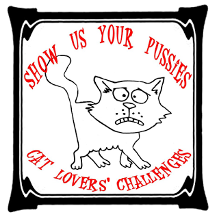 Show Us Your Pussies Cat Challenge