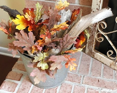 Fall leaves in a bucket with driftwood
