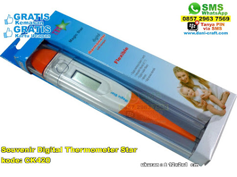 Souvenir Digital Thermometer Star