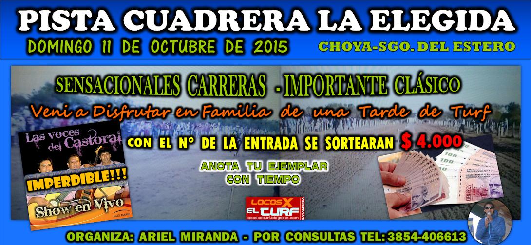 11-10-15-HIP. LA ELEGIDA