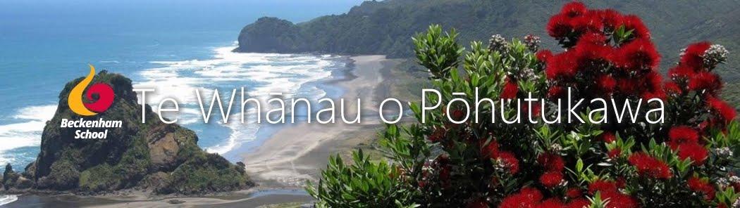 Te Whānau o Pōhutukawa