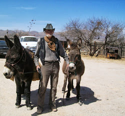 Old Miner and his burros