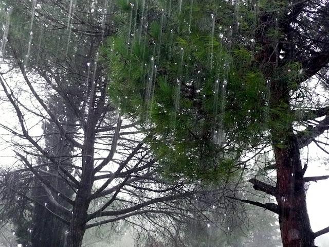 pioggia,