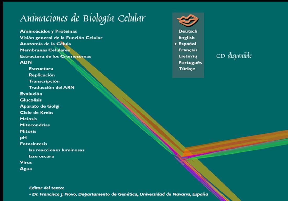somodospuntocero: Animaciones en Biología Molecular