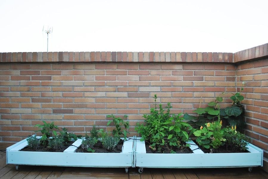 Decorar con un huerto urbano decoraci n - Nebulizador casero para terraza ...