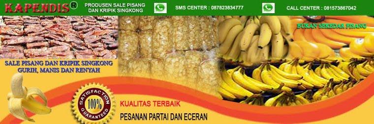 Peluang Usaha Sale pisang dan Kripik Singkong