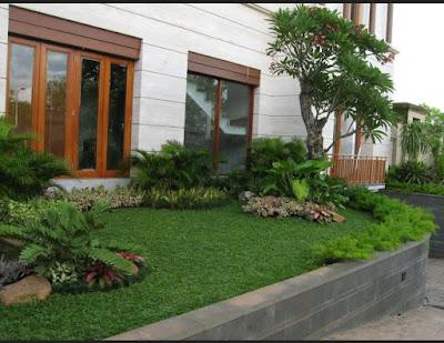 taman rumah minimalis bagian luar