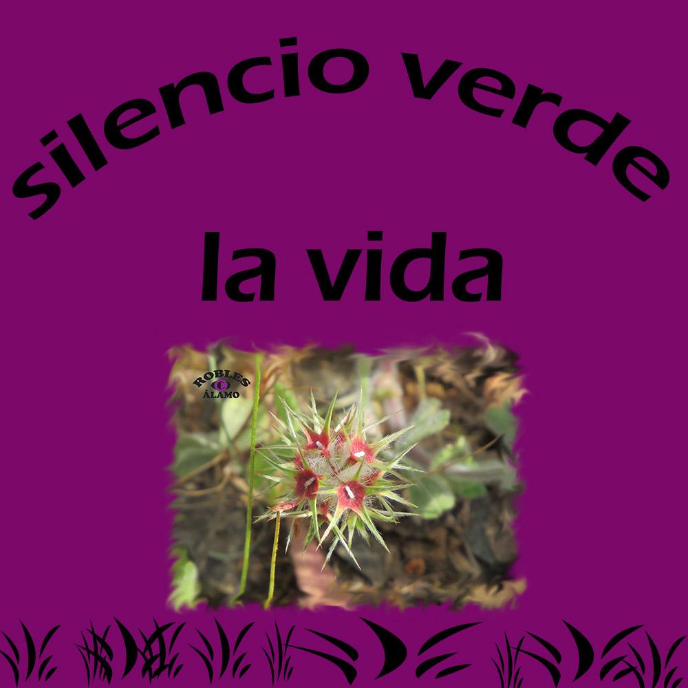 Silencio VERDE: