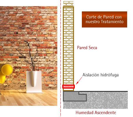 Hdec humedad de cimientos tratamientos del problema por - Como tratar la humedad en las paredes ...