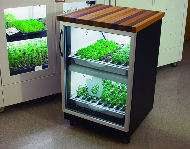 The New York Green Advocate Haute Hydroponics Urban Cultivator Indoor Growing System