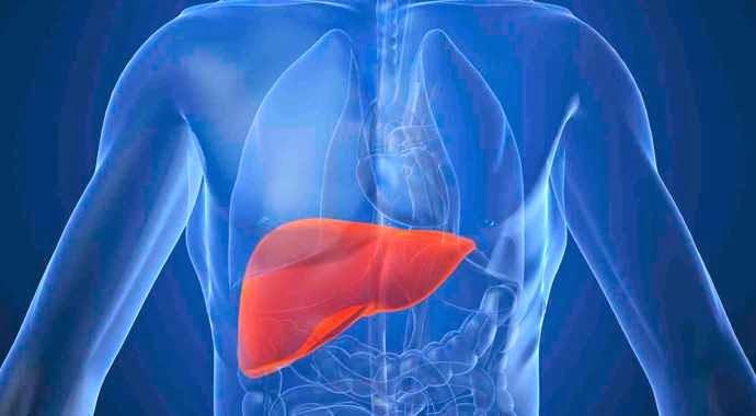 obat penyakit hepatitis yang alami