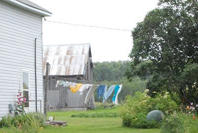 backyard farms wordless wednesday clotheslines as art