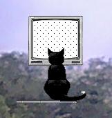 kucing nonton tv