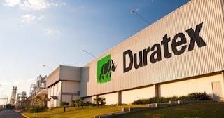 Governo do Estado trabalha para instalar fábrica da Duratex em Alagoas