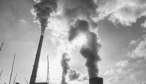pétition contre exploitation biomasse de Gardanne (tue nos forêts !!!)