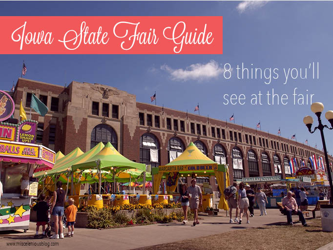 From people to animals to celebrities, there are some things you can always count on seeing at the Iowa State Fair.