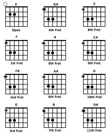 Jenis Chord Pada Gitar Yang Perlu Diketahui Gitaris