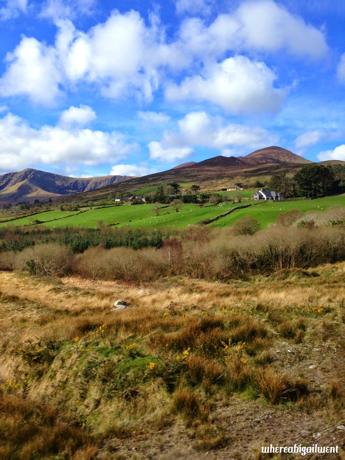Views of the Irish Countryside