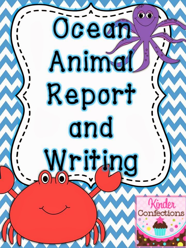 title underlined report