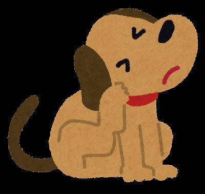 かゆい犬のイラスト