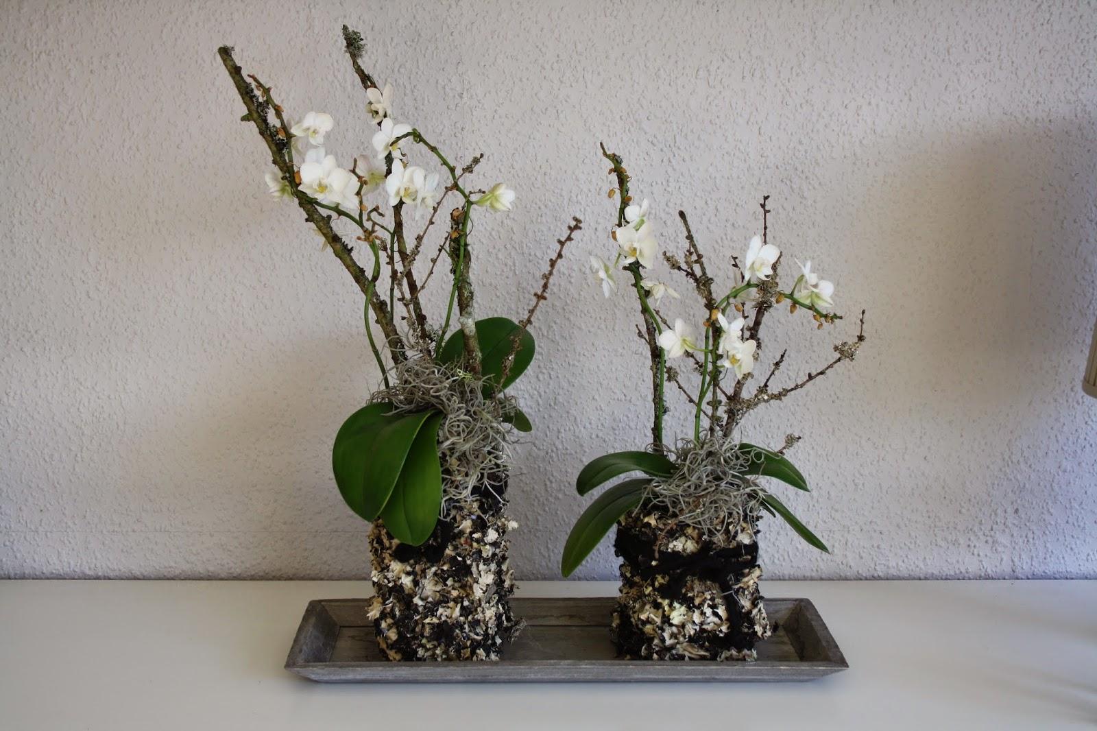 Fru poulsen blomster dekorationer for Billige dekoration
