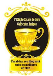 Blog Eleito pelos blogueiros entre os melhores de 2012