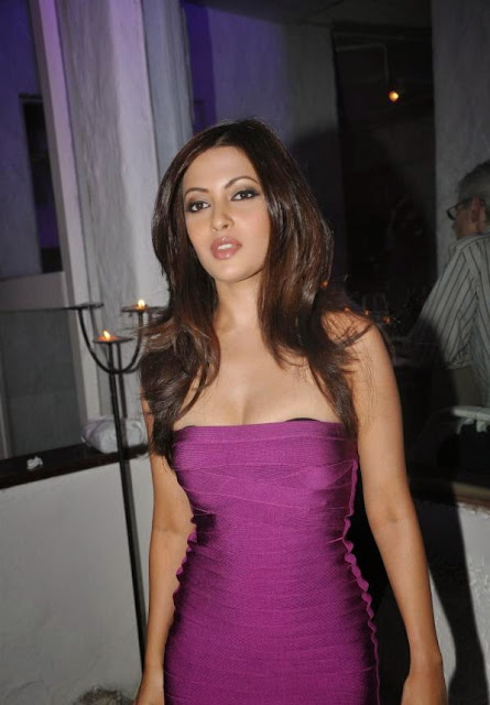 Riya Sen Launches Bollywood Striptease Book