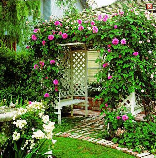 Как именно растения украшают их для