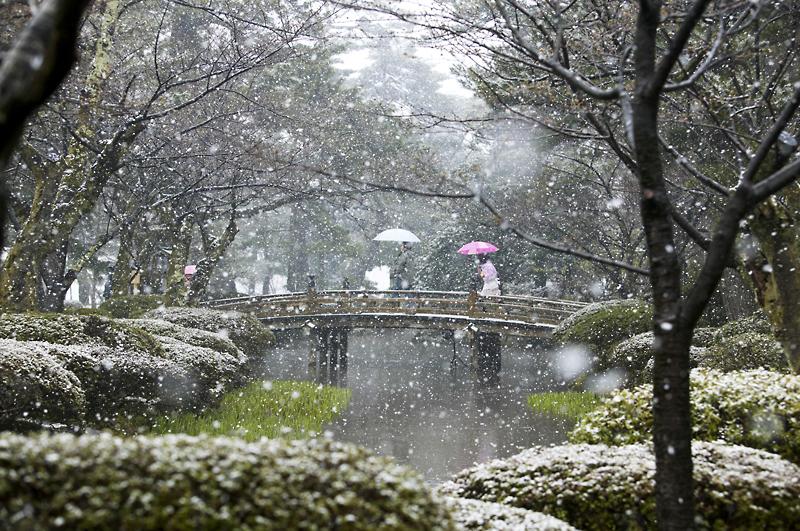 Hedgehogcraft february 2013 for Jardin kenrokuen en kanazawa