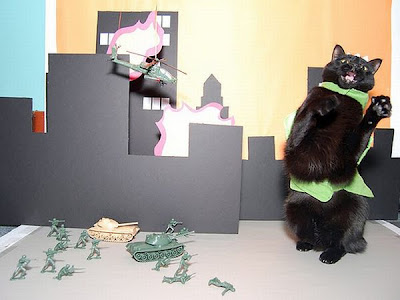 Watch as Catzilla Attacks Seen On www.coolpicturegallery.us