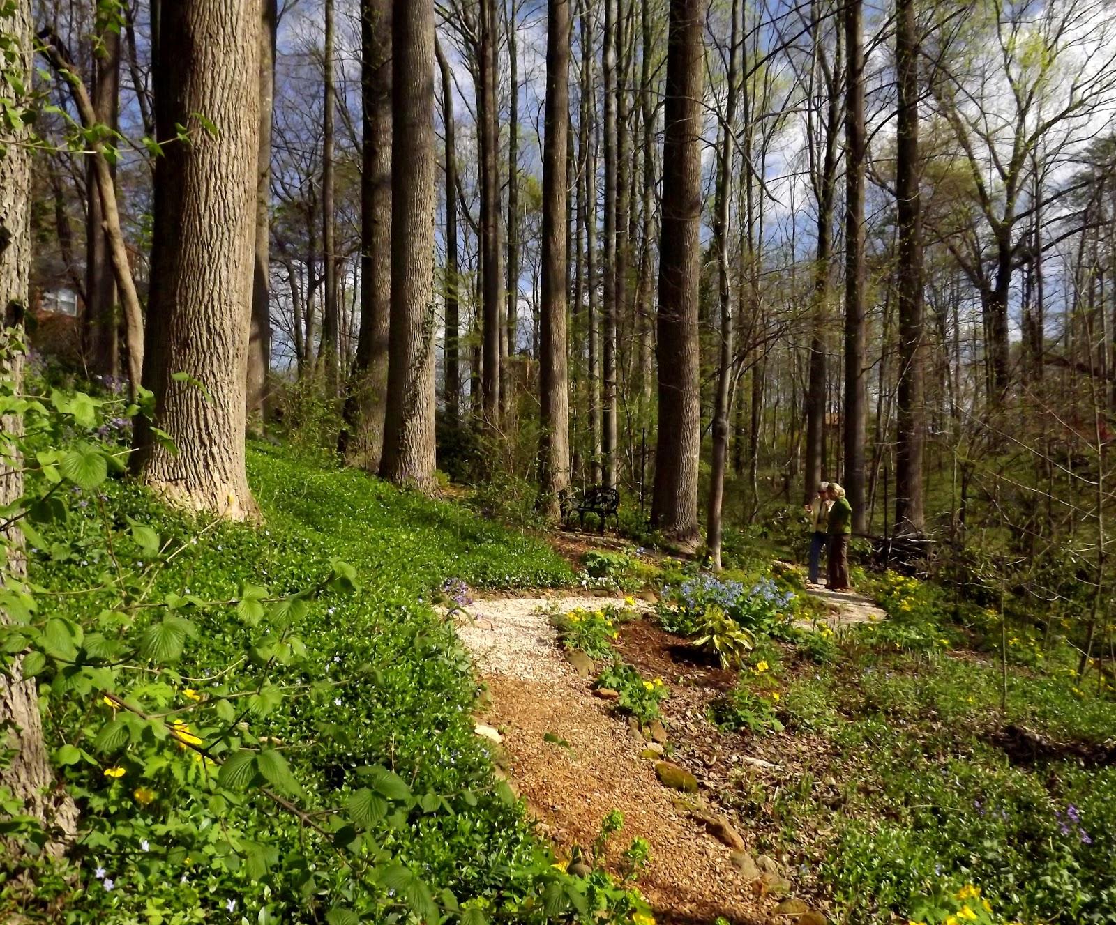 Forsythia Hill Finds: April 2013
