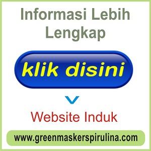 WEB INDUK