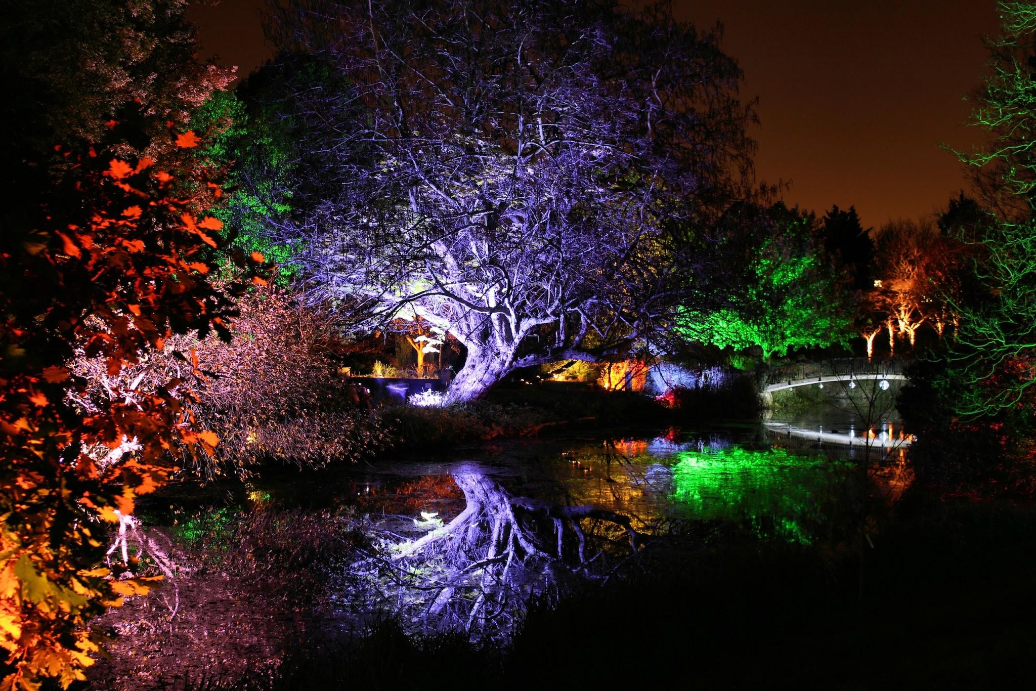 夜景の画像 p1_30