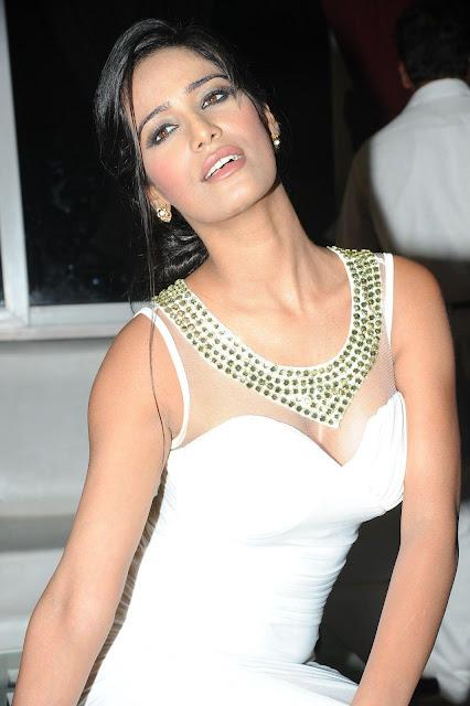 Model Bollywood Actress Poonam Pandey Hot Pics
