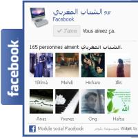 كيفية إضافة صندوق معجبي الفيسبوك المنسدل