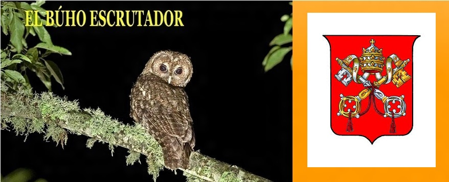 EL BUHO ESCRUTADOR