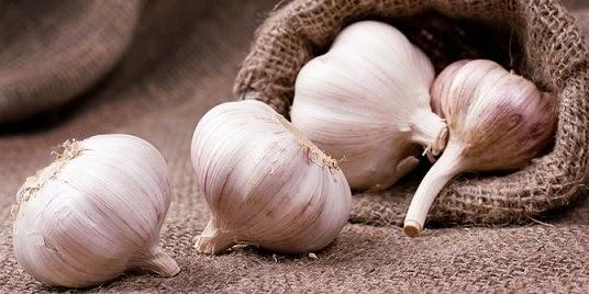 6 Alasan Bawang Putih Dapat Mencegah Kanker Payudara