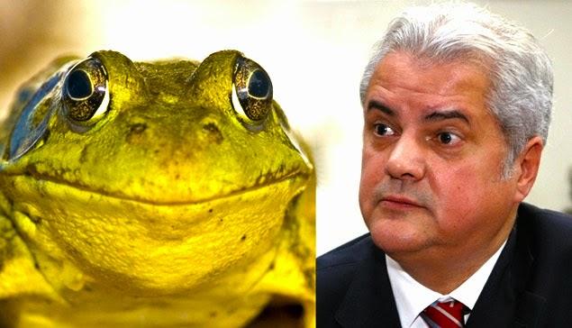 Adrian Nastase has a frog