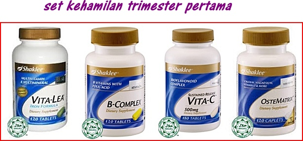 Image result for set mengandung shaklee trimester 1