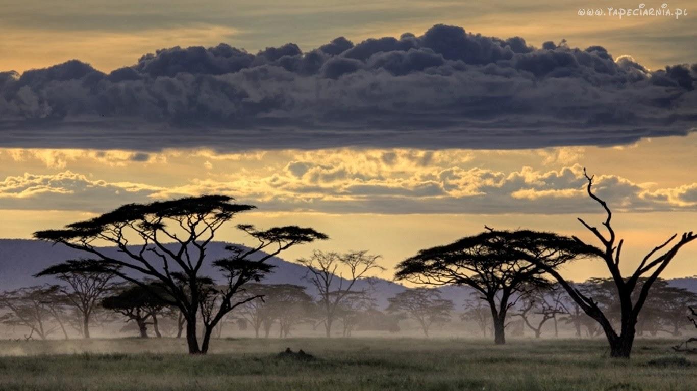 Marzyłam o Afryce, Gallmann Kuki, Okres ochronny na czarownice, Carmaniola