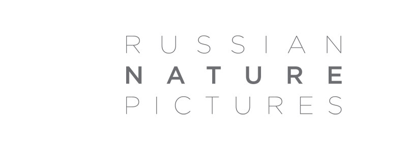 Russian Nature Pictures