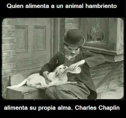 QUIEN ALIMENTA A UN ANIMAL HAMBRIENTO ALIMENTA SU PROPIA ALMA.